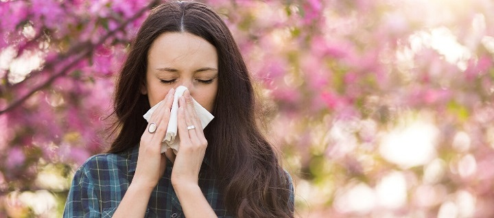 Common Seasonal Allergies and How to Treat Them